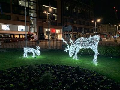festive lighting